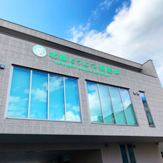 千葉県鎌ヶ谷市道野辺中央 動物病院 看板