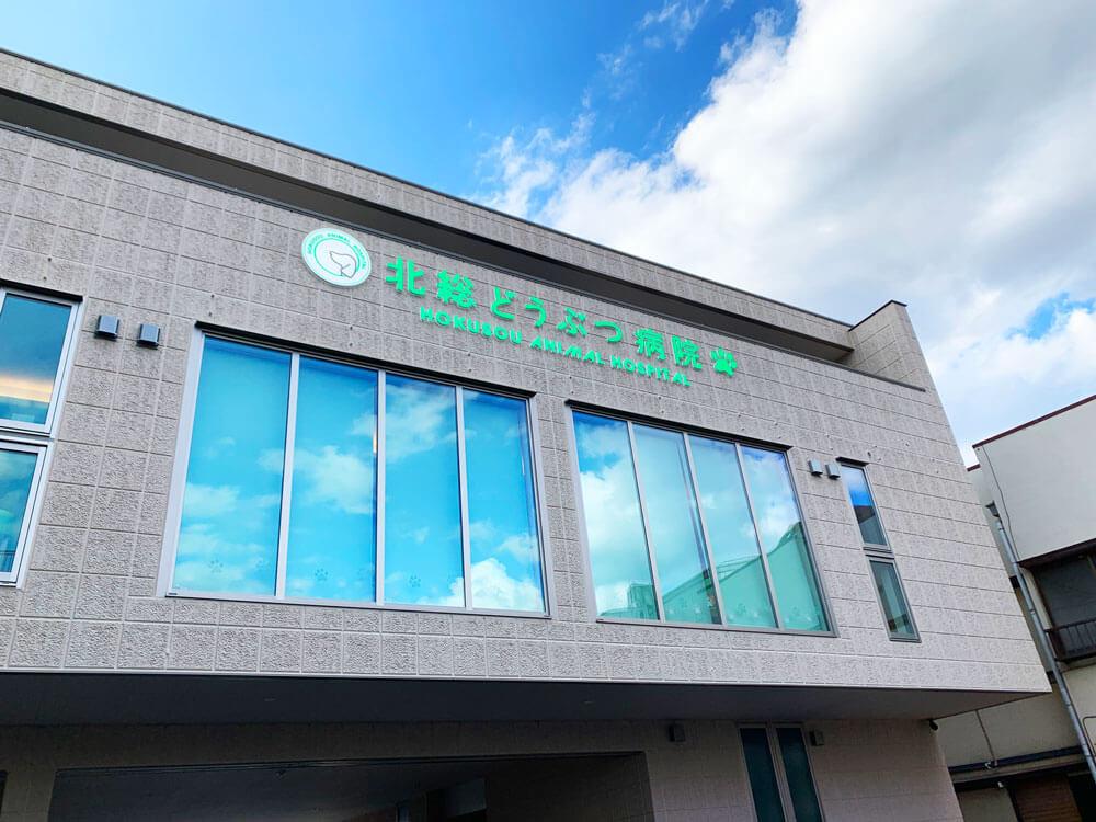 鎌ヶ谷市 北総どうぶつ病院 看板デザイン製作施工